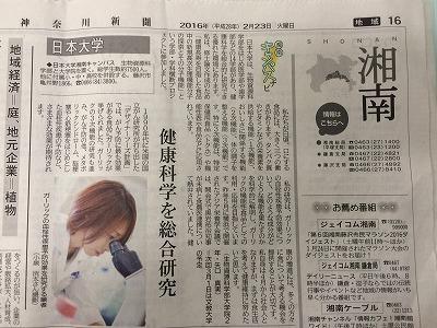 神奈川新聞「湘南キャンパスナビ」で本大学院生物資源科学研究科応用生命科学専攻 矢口 真実 さんが紹介されました