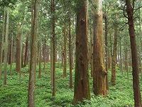 大学院研究生の小林諒介さんが関東森林学会学生優秀論文賞を受賞しました!