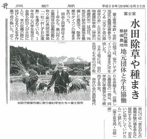 学生の実習活動が新聞に掲載されました