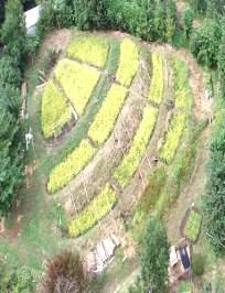 環境科学研究の拠点:生物資源の持続可能な利用の実現を目指して