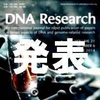 生命農学科 腰岡政二教授らのグループの研究成果がDNA Research誌でオンライン公開されました。