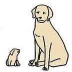 講演会「イヌは犬、ウマは馬 身近にいる動物たちのはなし」開催