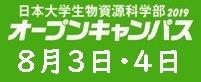 オープンキャンパス・学園祭(藤桜祭)・進学相談会
