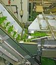 地域食品企業論研究室