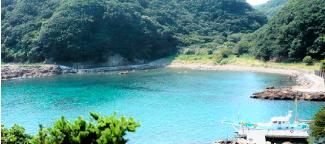下田臨海実験所