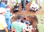土壌調査実習