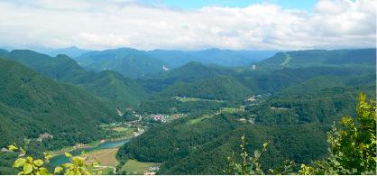 University forest-Minakami