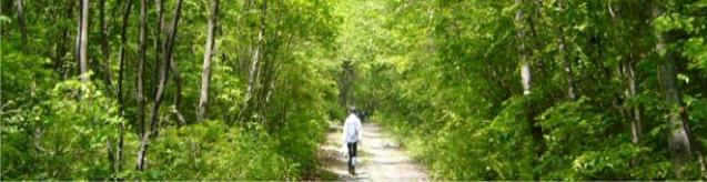森林資源科学科