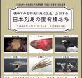 博物館企画展「標本で見る神奈川県に生息・分布する日本列島の固有種たち」開催中!!