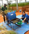 熱帯資源作物研究室