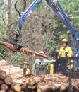 森林利用学研究室