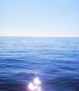 海洋環境学研究室