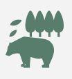 TBSラジオ 森本毅郎 スタンバイ!(5/23)で森林資源科学科 岩田 教授のコメントが紹介されました