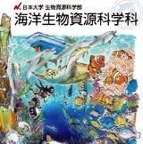 サンゴ礁学会の論文賞を受賞しました