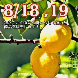 くらしの生物学科「住まいと環境研究室」と小田原柑橘倶楽部とのコラボ商品の販売がはじまりました!