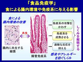 食品免疫学