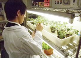 植物生命科学