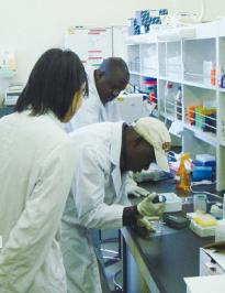 動物感染症研究の中核拠点